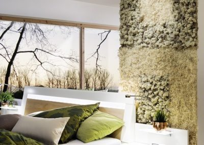 Moosbilder - Islandmoos Curly Moos - Schlafzimmer