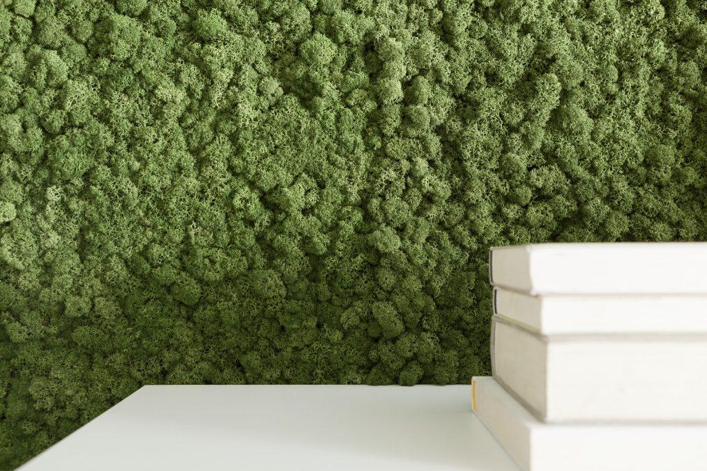Mooswand - Wohnzimmer - Islandmoos Mittelgrün