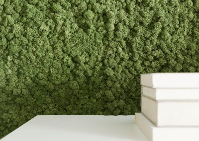 Islandmoos als Wandgestaltung im Wohnzimmer