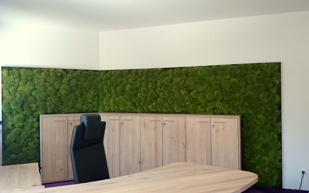 Büroeinrichtung mit einer Bollmoos Wand
