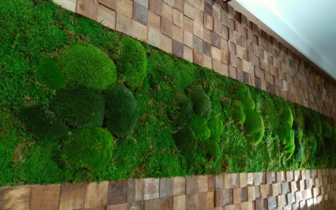 Eine Mooswand als Wandgestaltung im Hotelzimmer