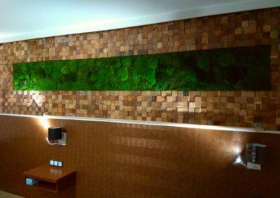 Mooswand mit Wald-/ Polstermoos im Hotelzimmer
