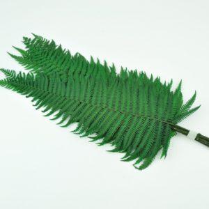 Stabilisierter Parchment Farn Grün