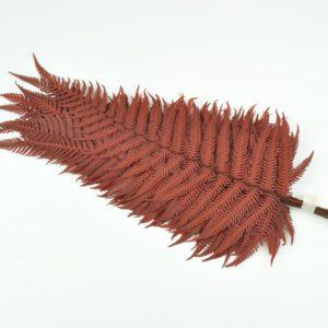 Stabilisierter Parchment Farn Rot